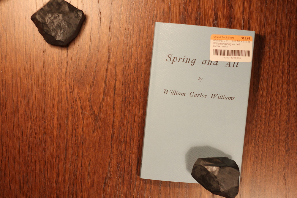 william williams spring and all essay Buy products related to william carlos williams poetry products and see what customers say about william carlos williams poetry products on amazoncom free delivery possible on eligible purchases.
